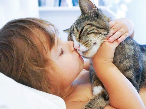 girl kissing cats