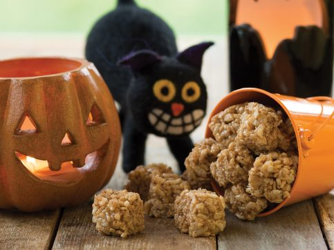 rice snacks, pumpkin, and cat